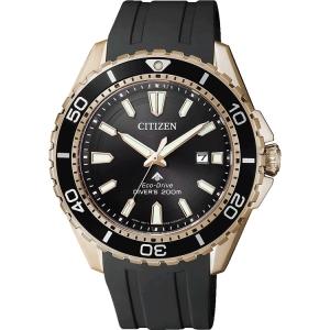 Citizen Promaster Eco-Drive BN0193-17E Horlogeband 22mm