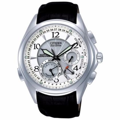 Citizen Eco-drive BL9000-32A Horlogeband 21mm